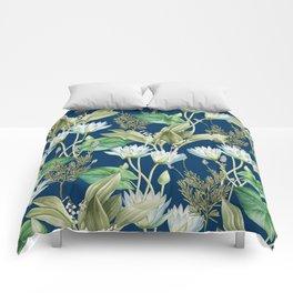 Lilyka    Comforters