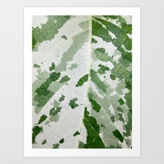 Speckled Leaf Art Print