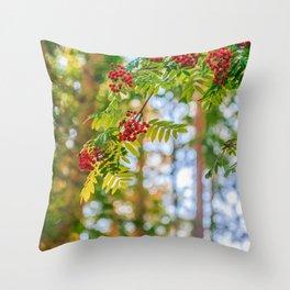 Bunches of rowan berries Throw Pillow