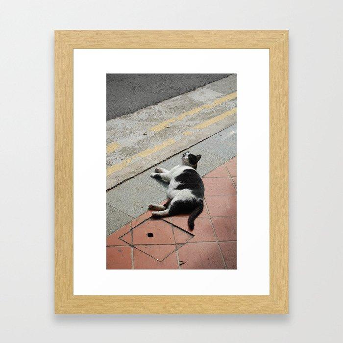 Puss in Haji Lane Framed Art Print
