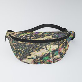 Prism Power Fanny Pack