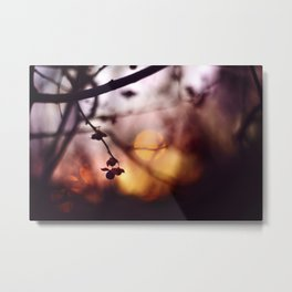 Autumn's glow Metal Print