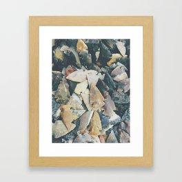 Desert Relics Framed Art Print