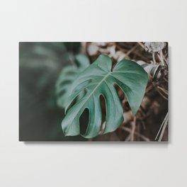 Tropic Life Metal Print