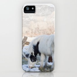 mini horses and a view iPhone Case