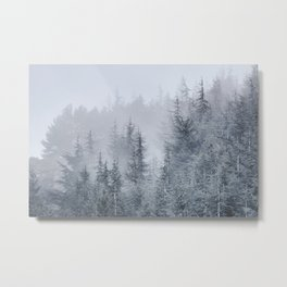 Early moorning... Into the woods Metal Print