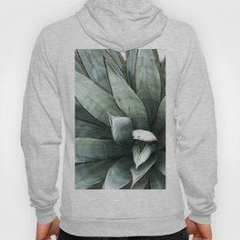 Botanical Succulents // Dusty Blue Green Desert Cactus High Quality Photograph Hoody