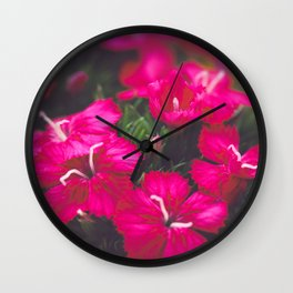 Pink Phlox Flower Wall Clock