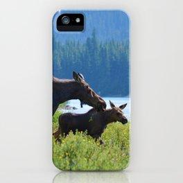 Mother moose & calf at Maligne Lake in Jasper National Park iPhone Case