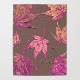 Japanese maple leaves - neon pink on khaki Poster