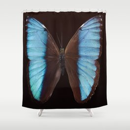 Butterfly exotic Shower Curtain