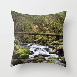 Paradise Creek III Throw Pillow