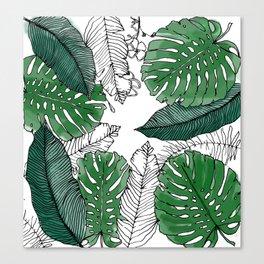 Tropical leaves Canvas Print