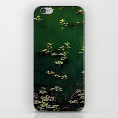 Afternoon At The Pond iPhone & iPod Skin