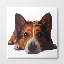 Puppy Eyes Metal Print