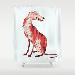 Whippet 1 Shower Curtain