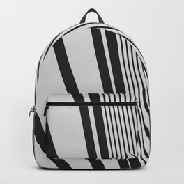 Opt. Exp. 1 Backpack
