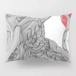 Mars View Pillow Sham