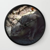 otters Wall Clocks featuring otters in the woods by Claes Touber