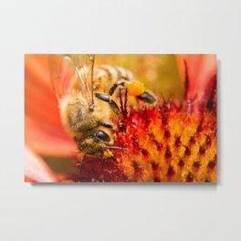 Bee, honey worker Metal Print