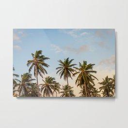 Sky beach palmier Metal Print