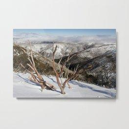 Snow on the Mountainside Metal Print