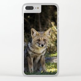 InTheFox Clear iPhone Case
