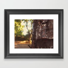 pole detail Framed Art Print
