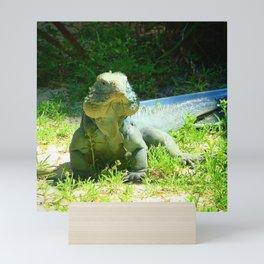 Iguana and Chill Mini Art Print