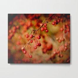 Cranberries Metal Print