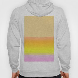 Sunset Over Nevada Desert Hoody