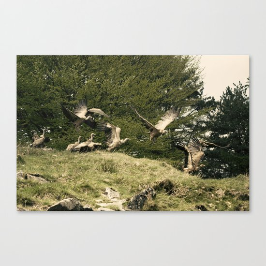 Putreak Canvas Print