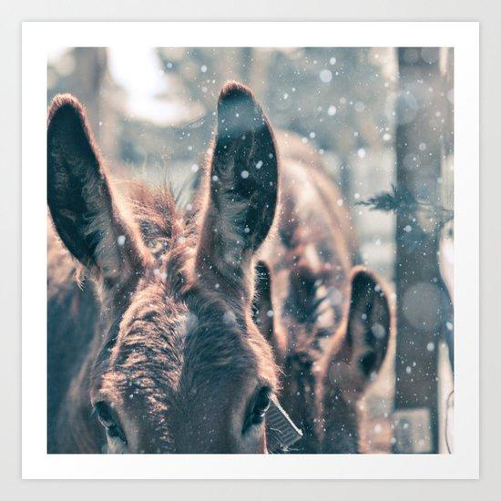 Snowing Donkey Art Print
