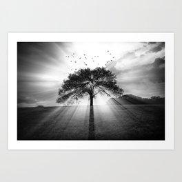 Birds Over A Sunset Tree Art Print