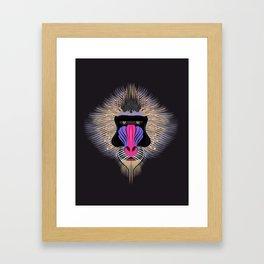 Mandrill monkey Framed Art Print