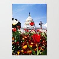 patriotic Canvas Prints featuring Patriotic Tulips by Madison Webb