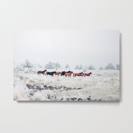Winter Horse Herd Metal Print