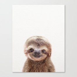 Baby Sloth, Baby Animals Art Print By Synplus Canvas Print