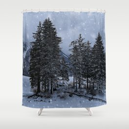 Trees At The Frozen Lago del Predil Shower Curtain