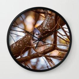Autumn Bluejay Wall Clock