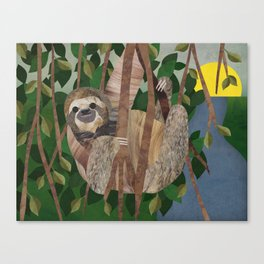 Three Toed Sloth February 2014 Print #2 Canvas Print