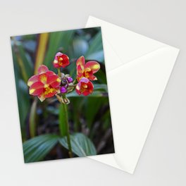 Hazards of a Seduction Stationery Cards