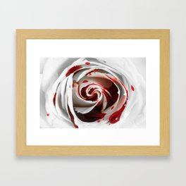 Bleeding Rose Macro Framed Art Print