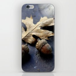 Under the oak iPhone Skin