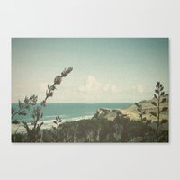 west coast Canvas Prints featuring West Coast by Hilary Upton