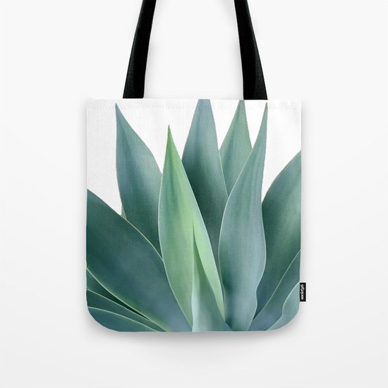 Agave blanco by galeswitzer