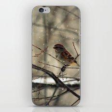 Winter friend. iPhone & iPod Skin