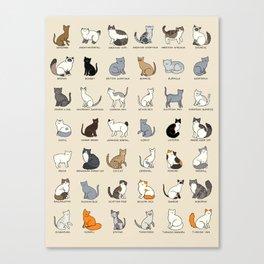 Cat Breeds Canvas Print