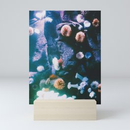 anemones Mini Art Print