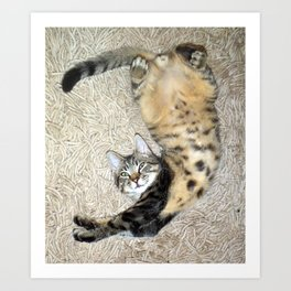 Stretch and Relax! Art Print